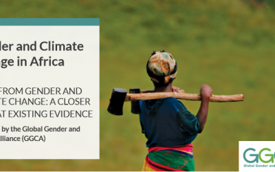 Facts from Gender and Climate Change: A Closer Look at Existing Evidence
