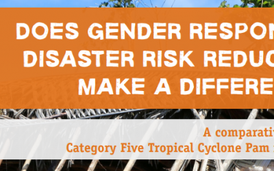 Disaster Risk Reduction Impact Study