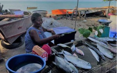Gender and Human Rights in Coastal Fisheries and Aquaculture
