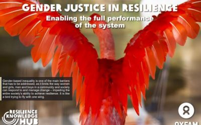 Gender Justice in Resilience